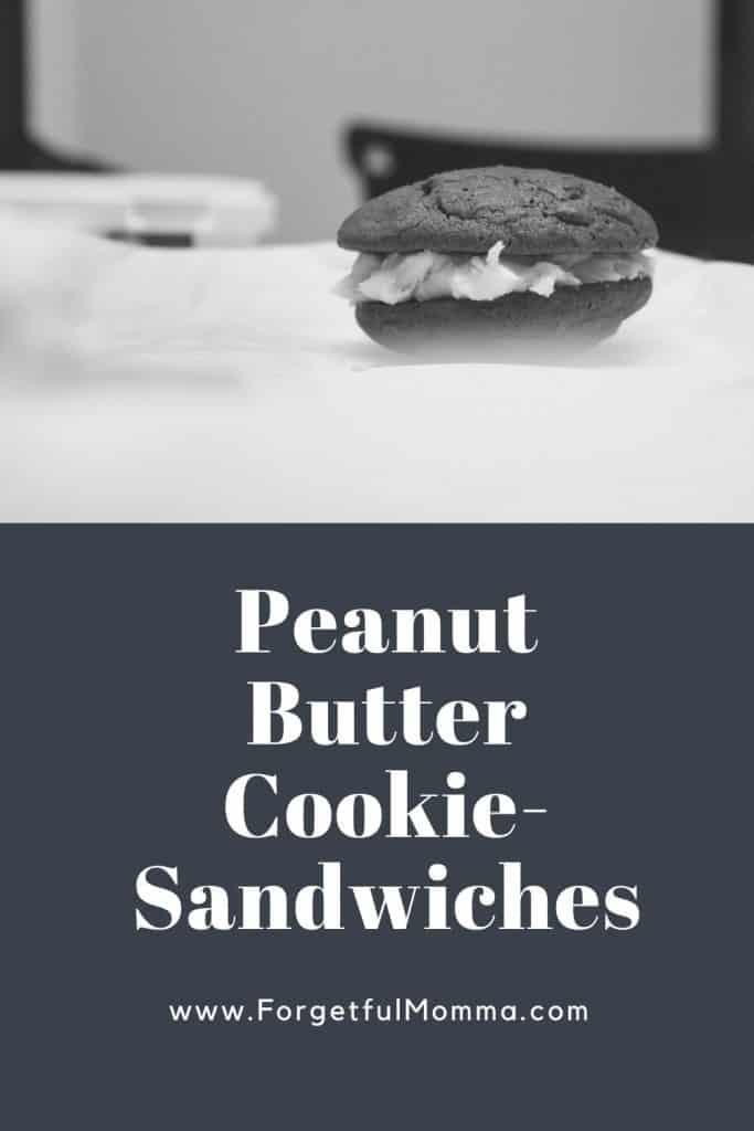 Peanut Butter Cookie-Sandwich