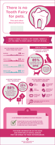 Keeping Your Pets Healthy – #DentalPetFacts