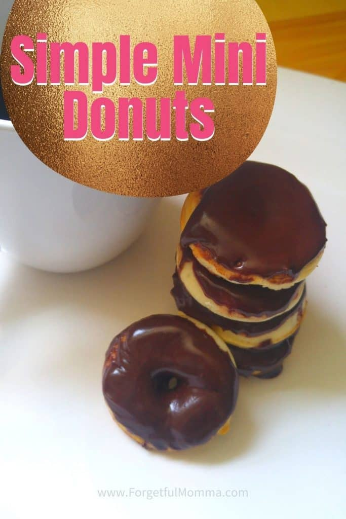 Simple Mini Donuts - Vanilla Donuts & chocolate frosting