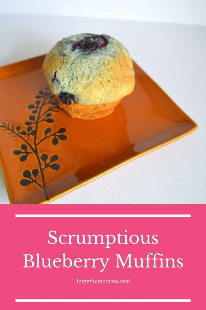 Scrumptious Blueberry Muffins