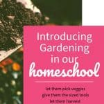 Introducing Gardening in our homeschool
