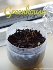Mini Greenhouse Gardening with Kids
