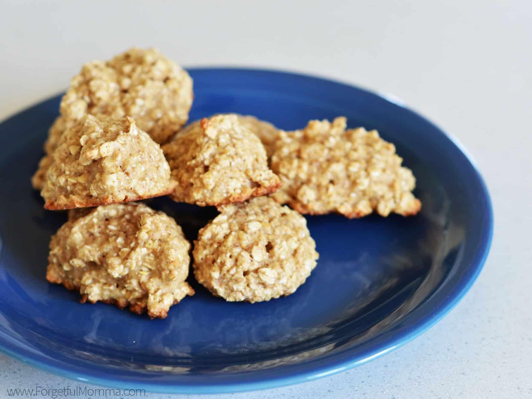 Egg Free Dairy Free Oatmeal Cookies