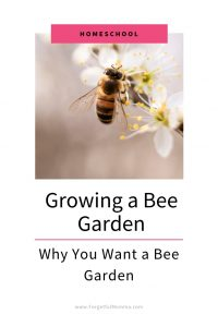 Growing A Bee Garden & Why You Want One