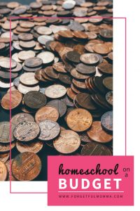 homeschool on a budget