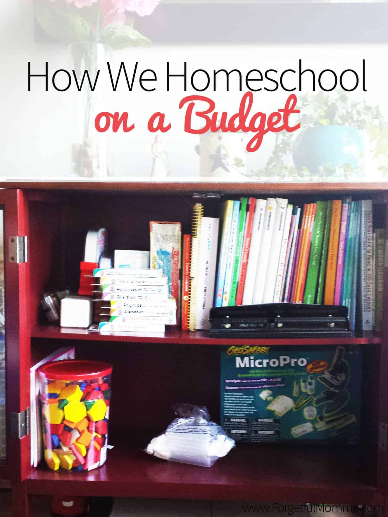 how we homeschool on a budget