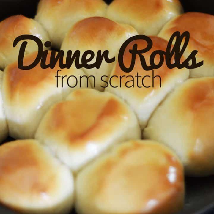 Dinner Rolls from Scratch