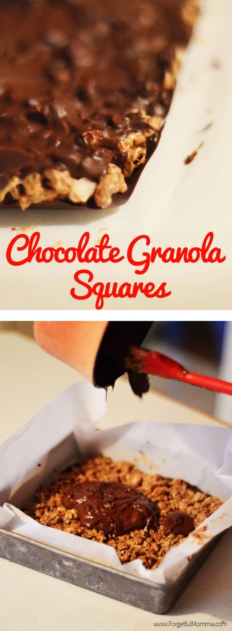 Chocolate Granola Squares