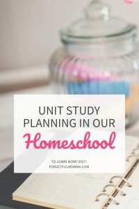 Unit Study in Our Homeschool