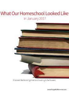 What Our Homeschool Looked Like in January 2017