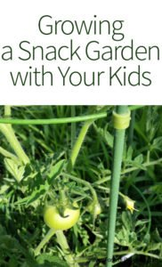 Growing a Snack Garden with Your Kids