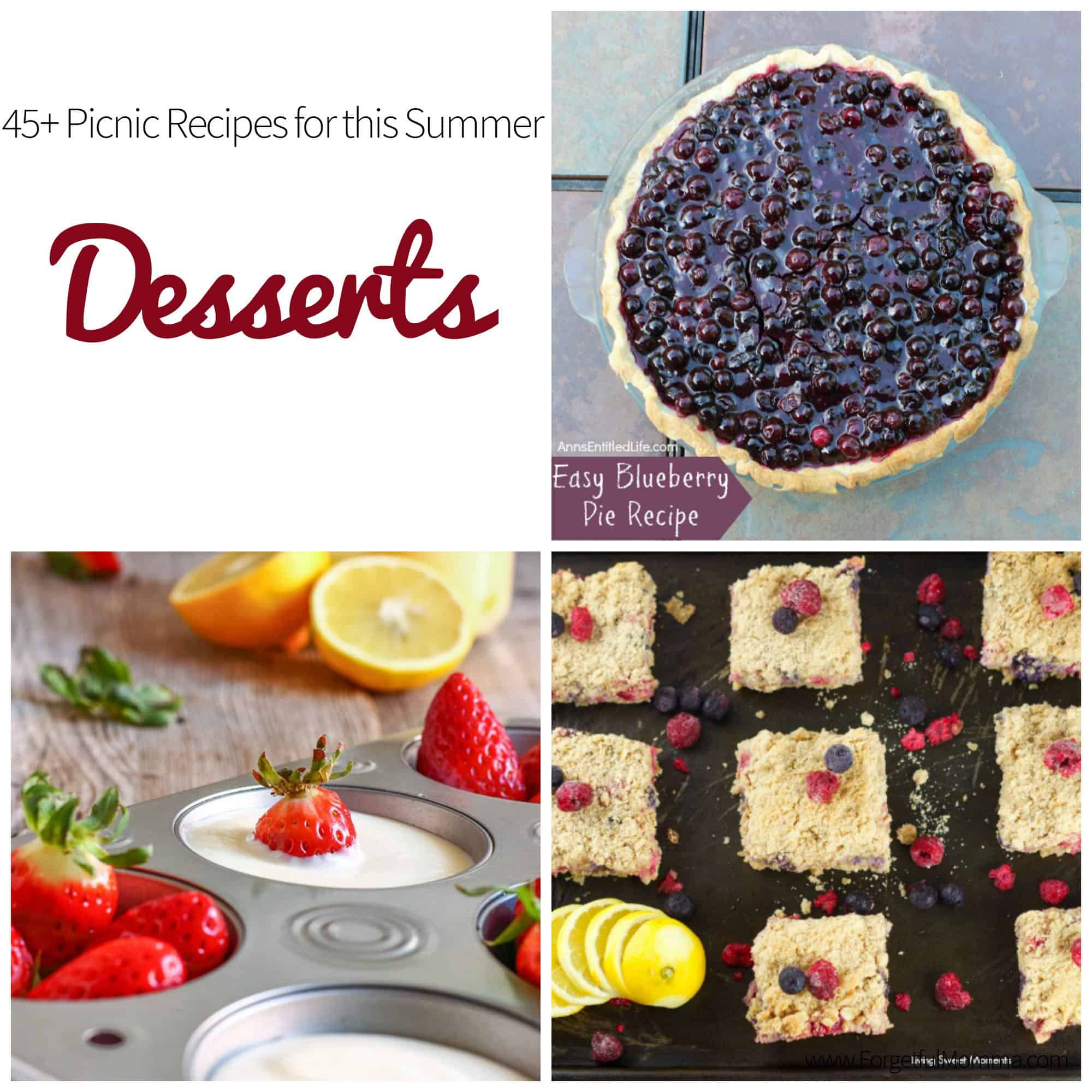 45+ Picnic Recipes for this Summer