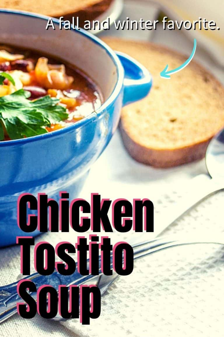 Hearty and Warm Chicken Tostito Soup
