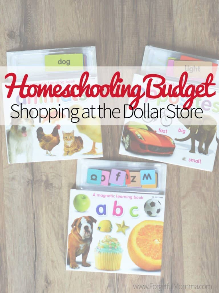 Homeschooling Budget: Shopping at the Dollar Store