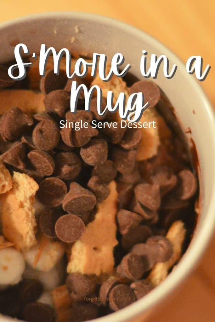 S'More in a Mug
