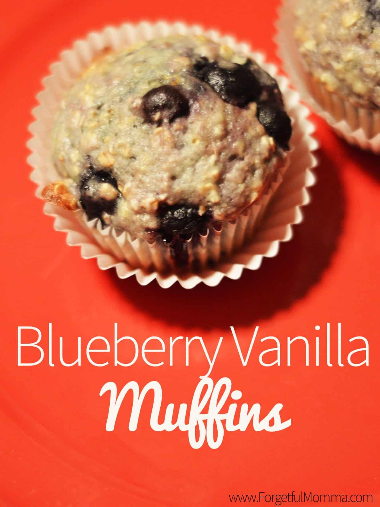 Blueberry Vanilla Muffin