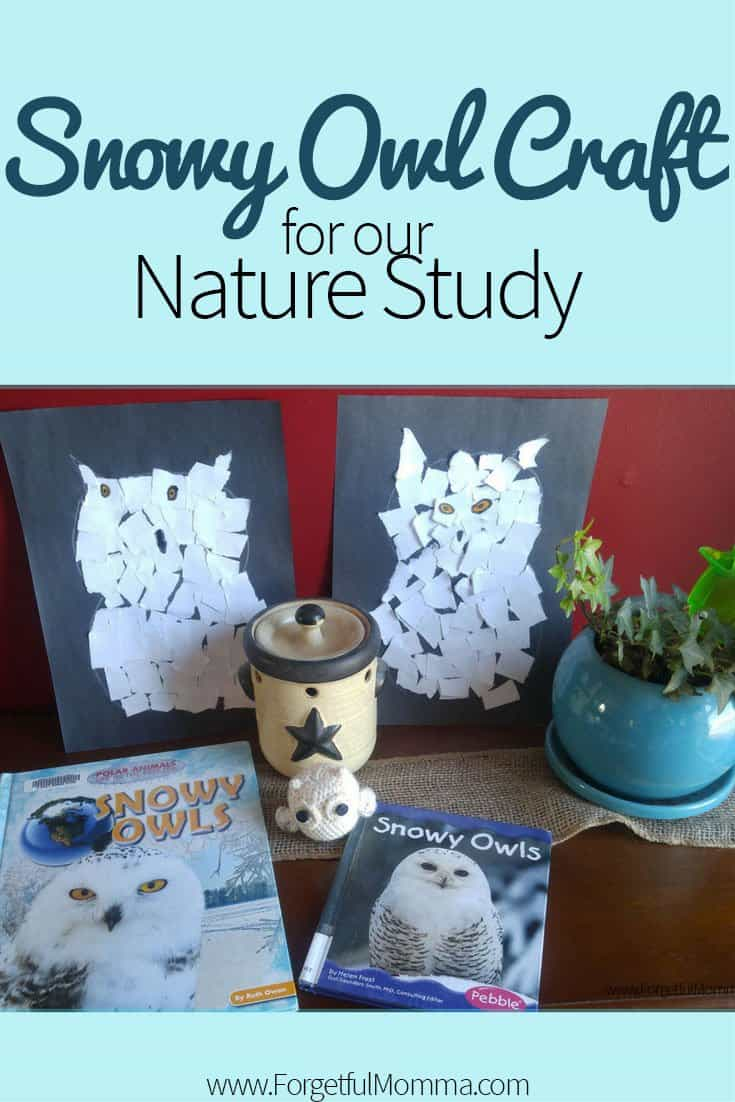 Snowy Owl Craft- Winter Nature Study