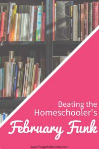 Beating the Homeschooler's February Funk
