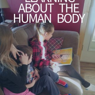 Learning About the Human Body