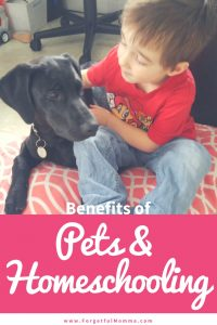 Benefits of Pets and Homeschooling