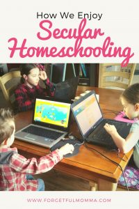 How We Enjoy Secular Homeschooling