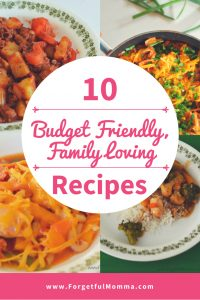 10 Budget Friendly, Family Loving Recipes