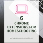 Chrome Extensions for Homeschooling
