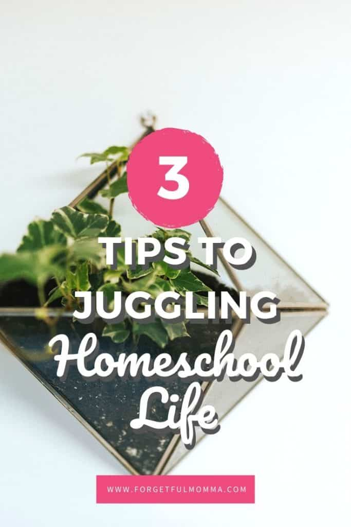 Tips to Juggling it all as A Homeschool Mom
