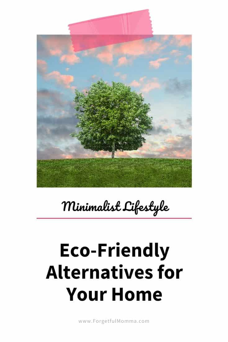 Eco-Friendly Alternatives for Your Home