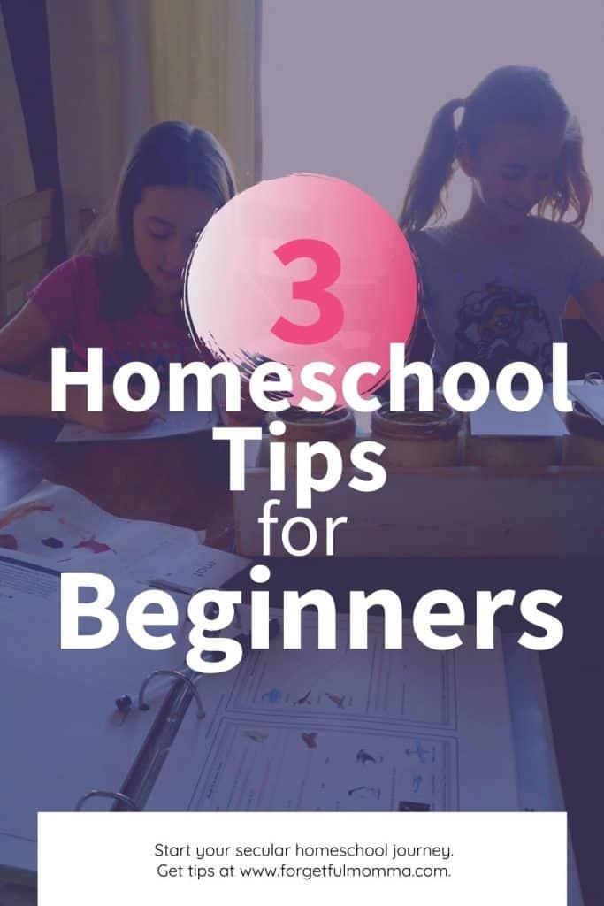 3 Homeschool Tips for Beginners