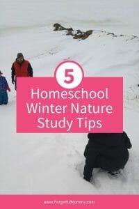 Homeschool Winter Nature Study Tips