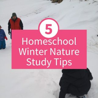 Homeschool Winter Nature Study Tips