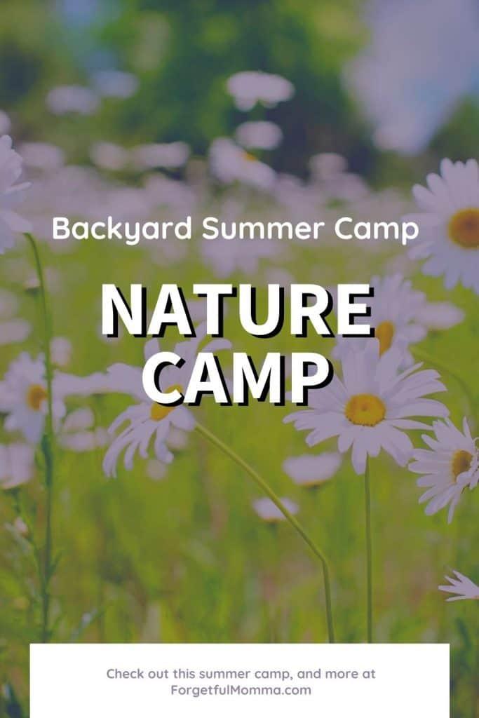 Backyard Summer Camp_ Nature Camp - daisies