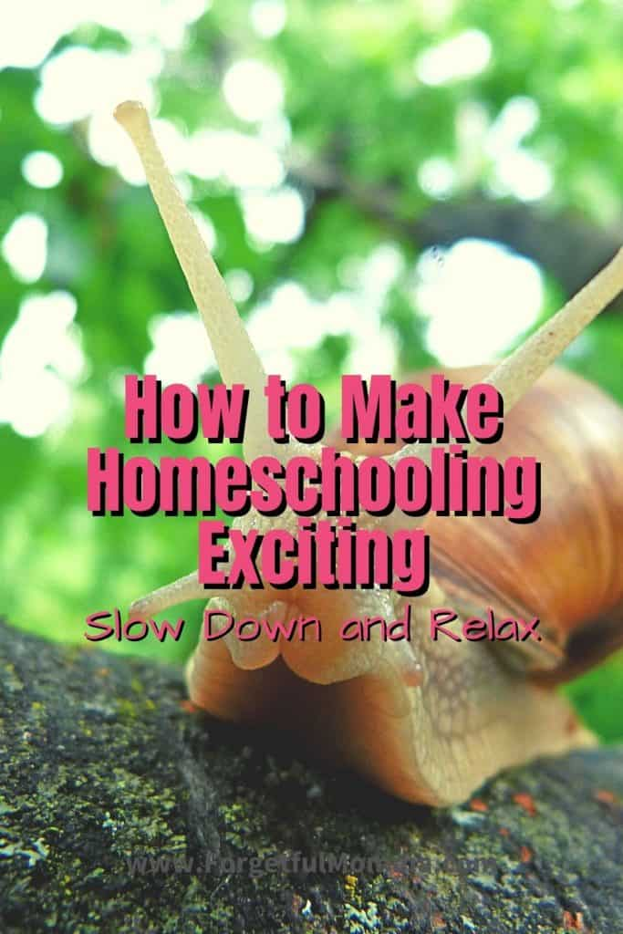 How to Make Homeschooling Exciting