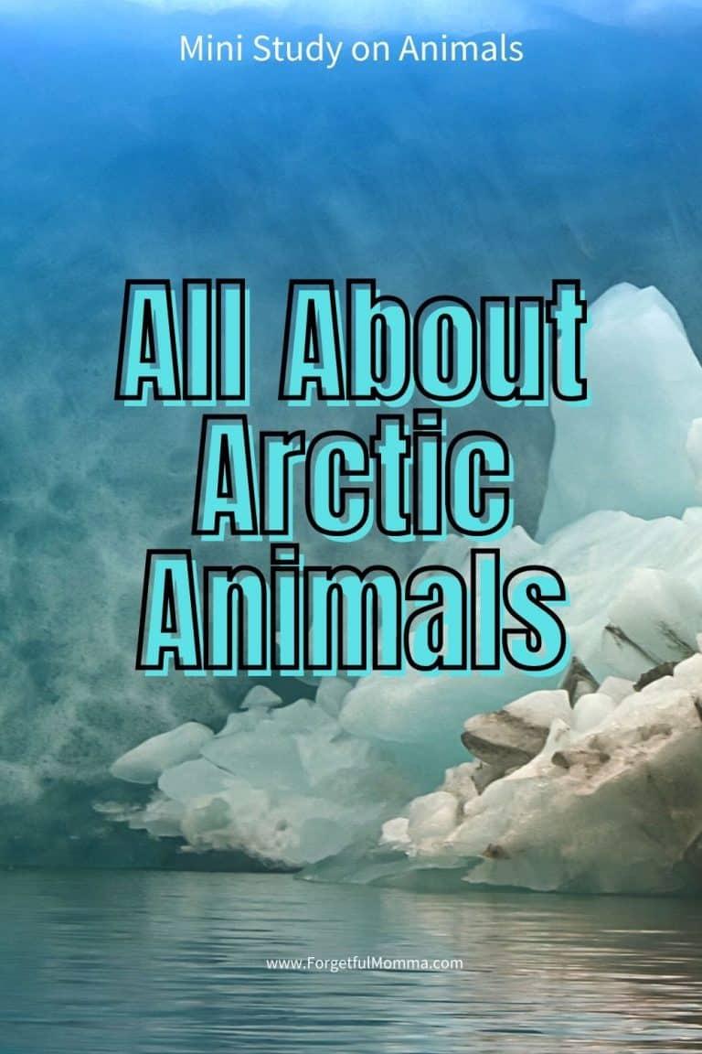 Mini Unit Study on Arctic Animal
