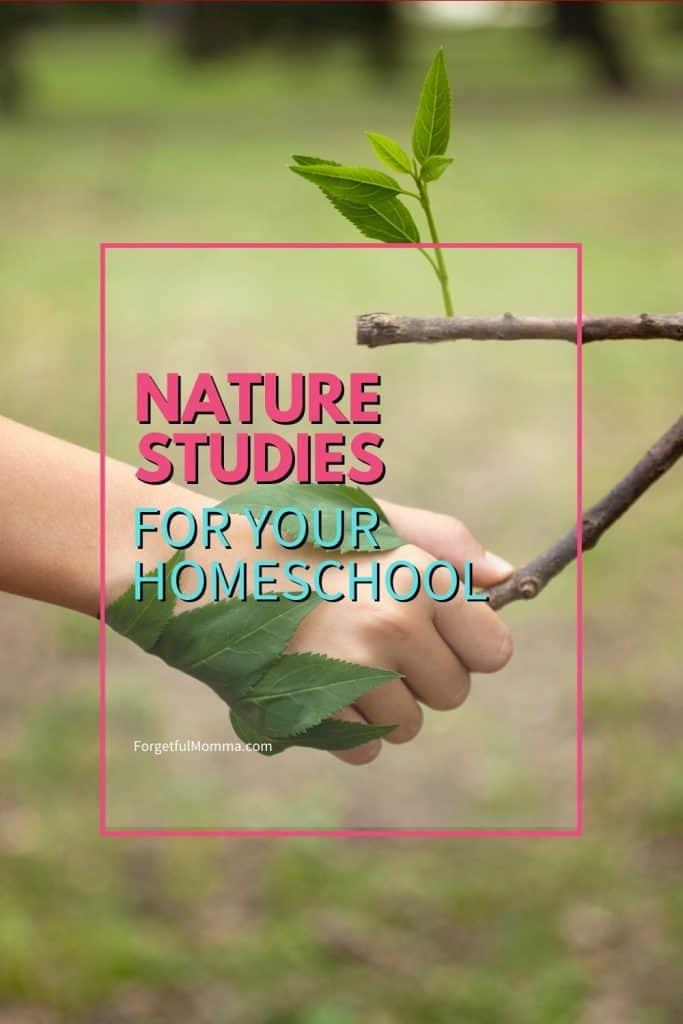 Nature Studies for your Homeschool