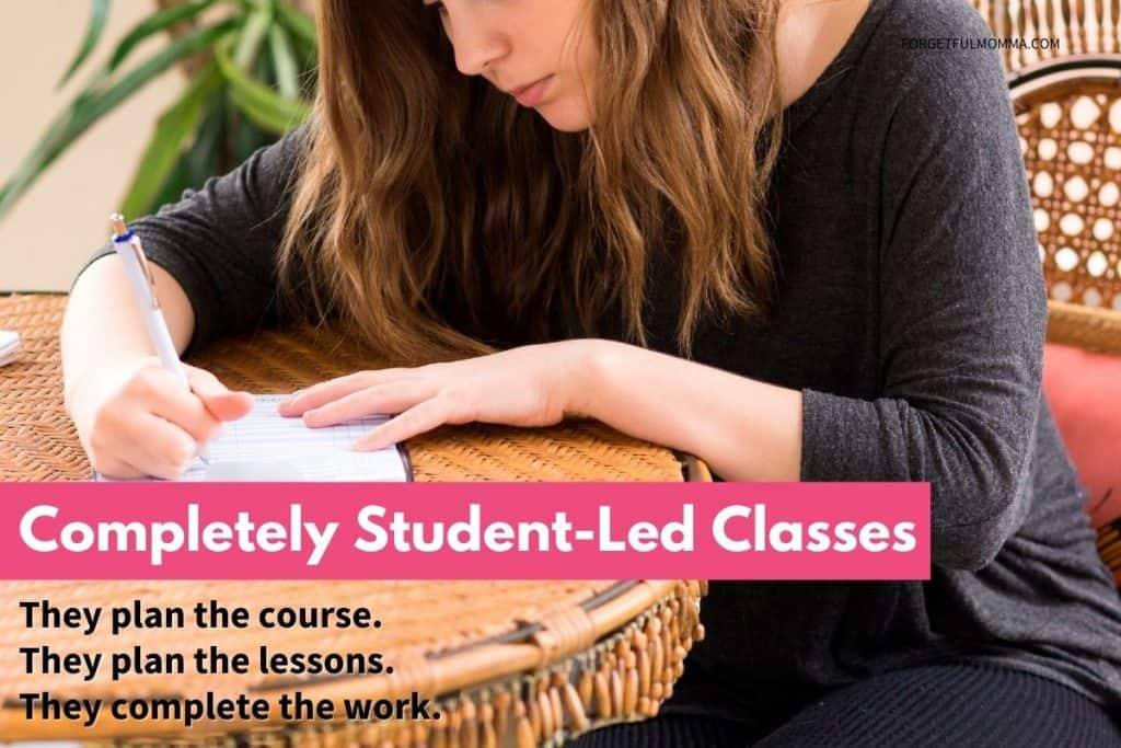 Completely Student-Led Classes - Student planning their course